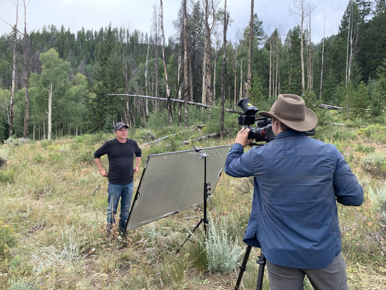 video-in-woods